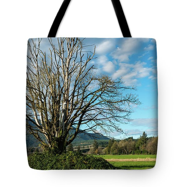 Tree And Sky Tote Bag