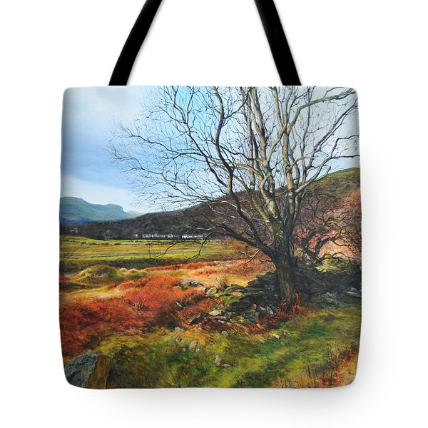 Tree At Aberglaslyn Tote Bag by Harry Robertson