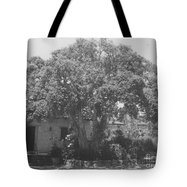Tree At Carmel Mission Tote Bag