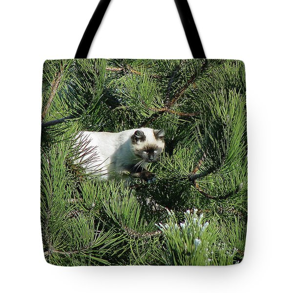 Tree Bandit Tote Bag by Shirley Heyn