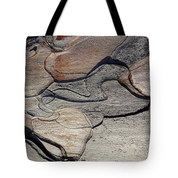 Tote Bag featuring the photograph Tree Bark 2 by Jean Bernard Roussilhe