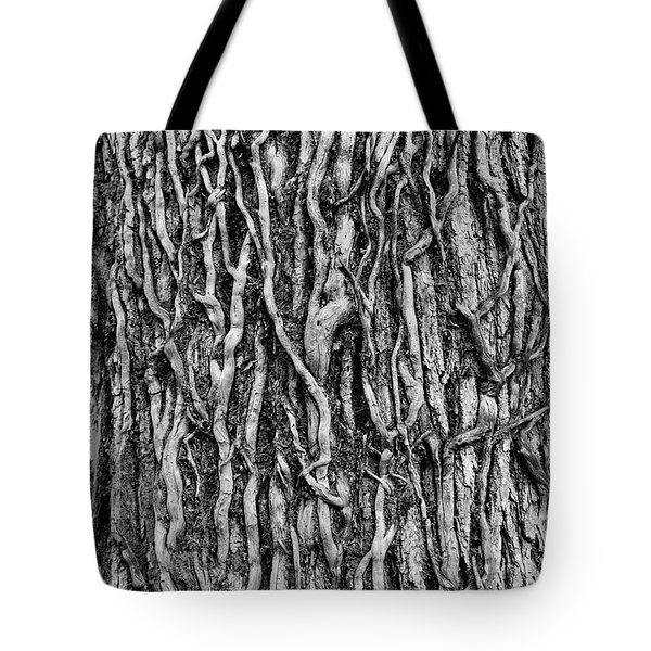 Tree Bark Abstract Tote Bag