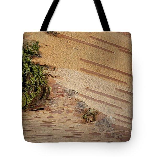 Tree Bark With Lichen Tote Bag