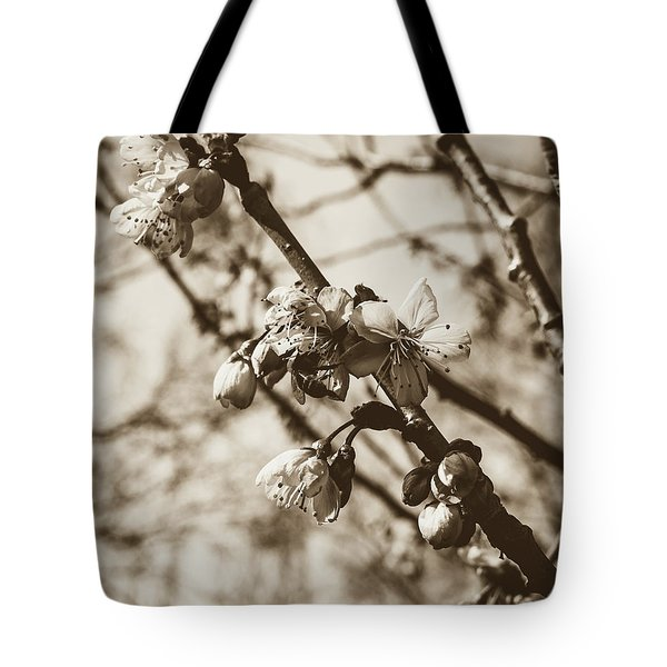 Tote Bag featuring the photograph Tree Blossom B by Jacek Wojnarowski