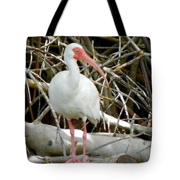 Tree Branch Tote Bag