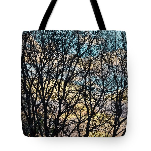 Tote Bag featuring the photograph Tree Branches And Colorful Clouds by James BO Insogna