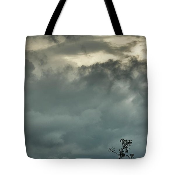 Tree. Bright Light Tote Bag by Rajiv Chopra
