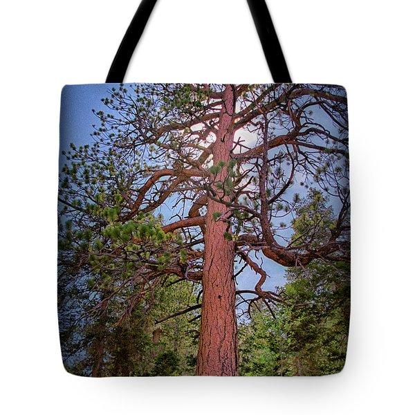 Tree Cali Tote Bag