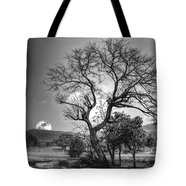 Tree Tote Bag by Charuhas Images
