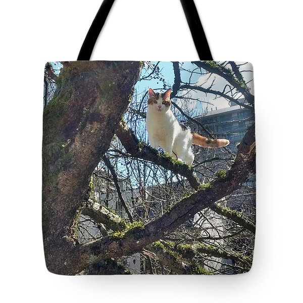Tote Bag featuring the photograph Tree Climber by Bill Thomson