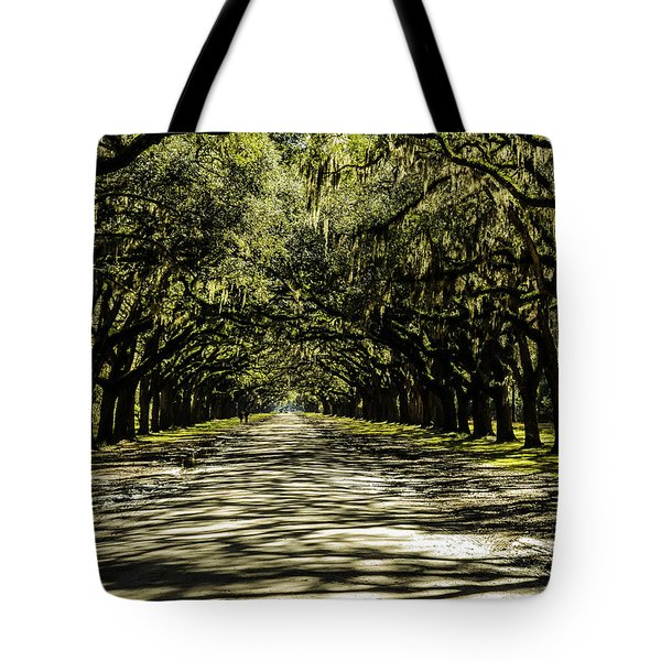 Tree Covered Approach Tote Bag