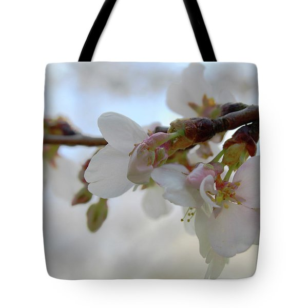 Dogwood Branch Pink Tote Bag