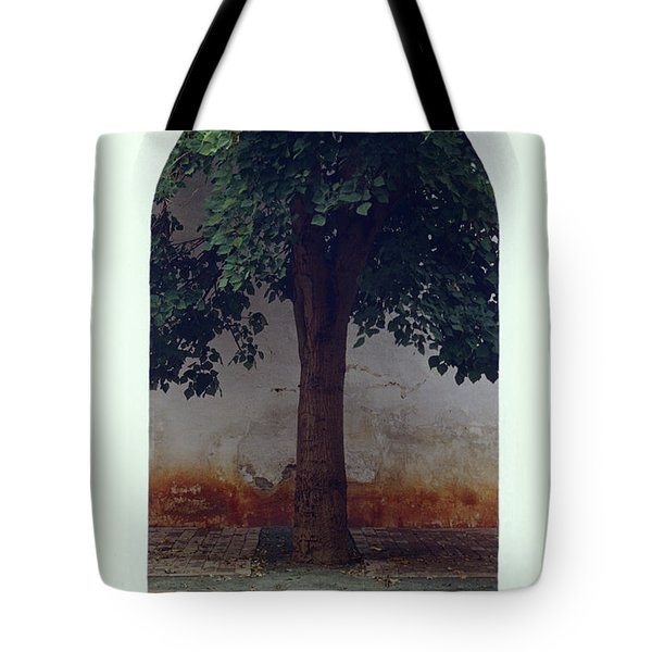 Tree Framed By Arch Oaxaca Mexico Tote Bag