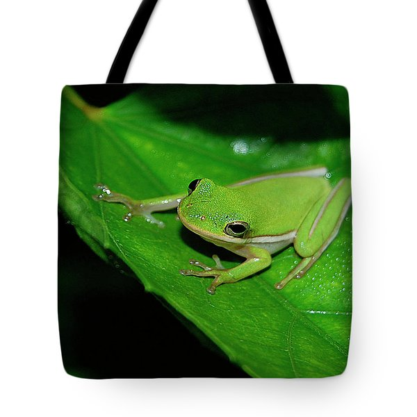 Tree Frog On Hibiscus Leaf Tote Bag by DigiArt Diaries by Vicky B Fuller