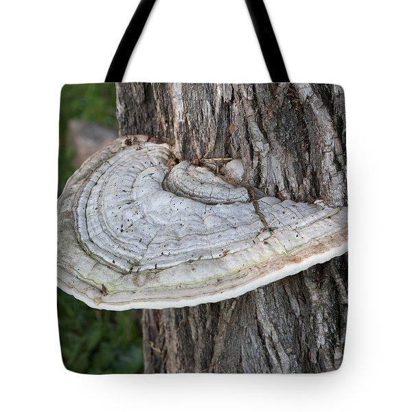 Tree Fungus Tote Bag