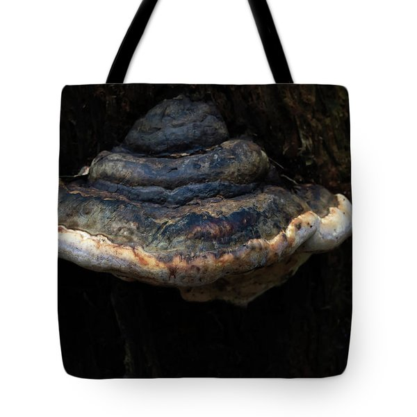 Tote Bag featuring the photograph Tree Fungus by Tikvah's Hope