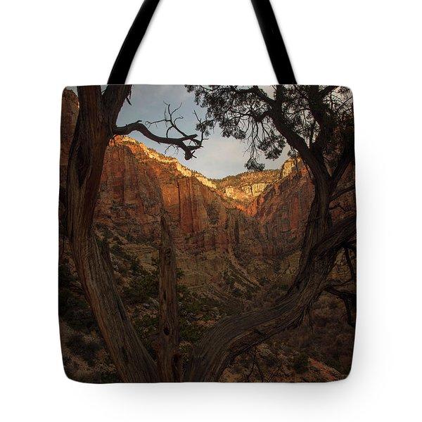Tree Heart Tote Bag