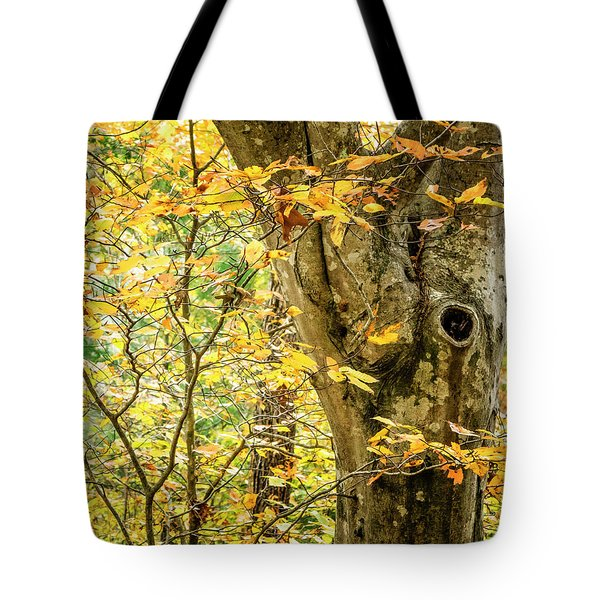 Tree Hollow Tote Bag