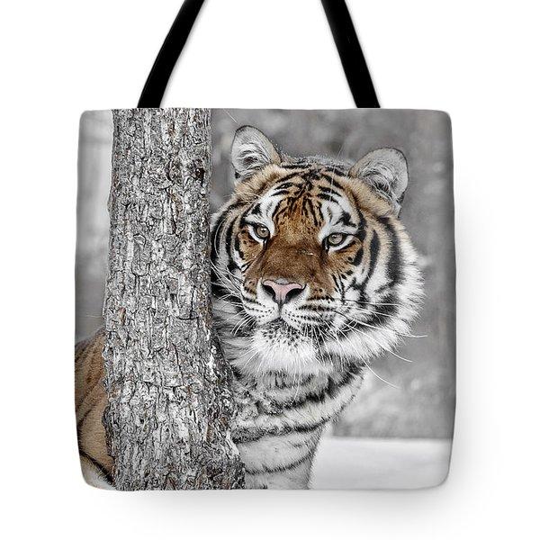 Tree Huggin Tote Bag