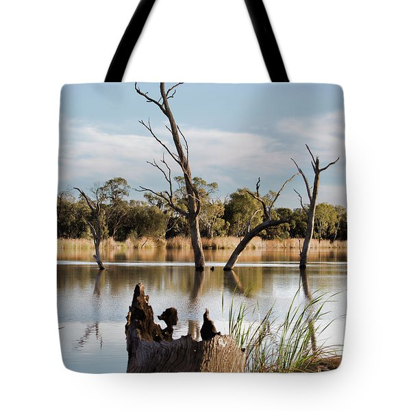 Tote Bag featuring the photograph Tree Image by Douglas Barnard