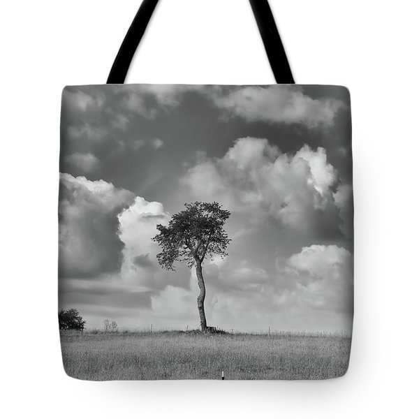 Tote Bag featuring the photograph Tree In A Field by Guy Whiteley