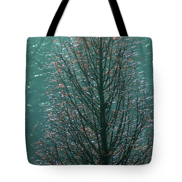Tree In Autumn, With Red Leaves, Blue Background, Sunny Day Tote Bag