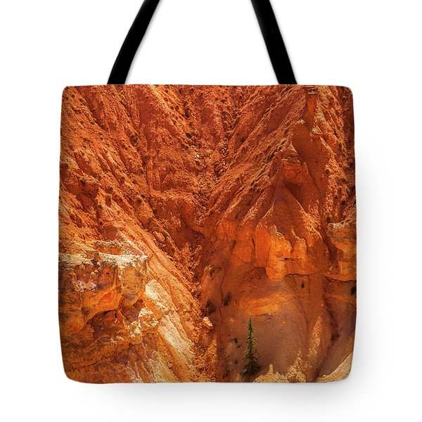 Tree In Bryce Tote Bag