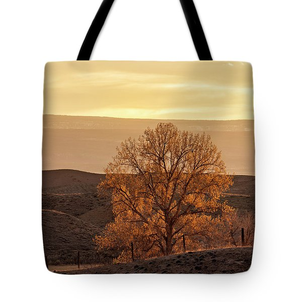 Tree In Desert At Sunset Tote Bag