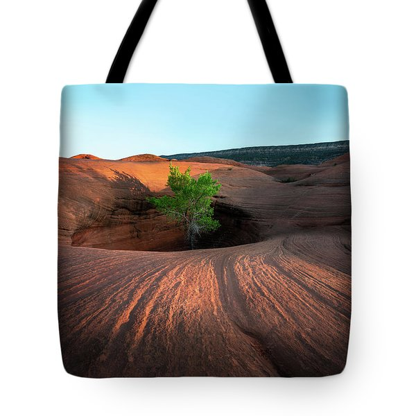 Tree In Desert Pothole Tote Bag