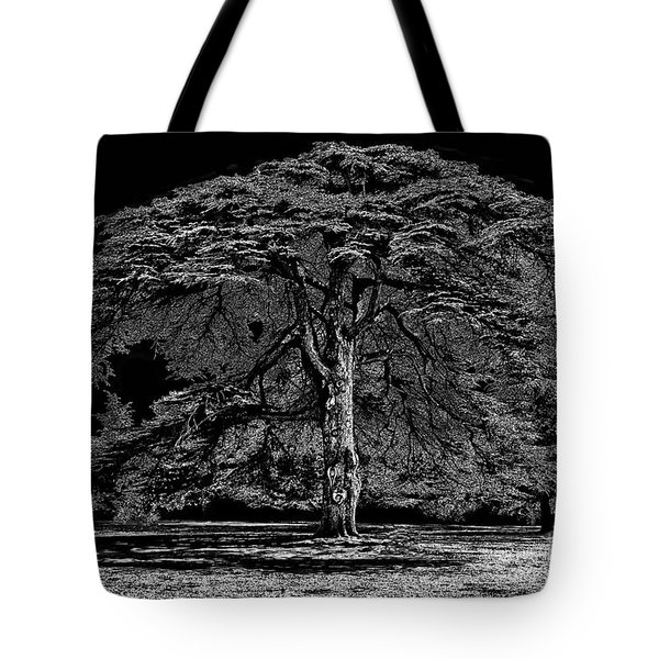 Tree In England Tote Bag