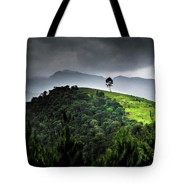 Tree In Kilimanjaro Tote Bag