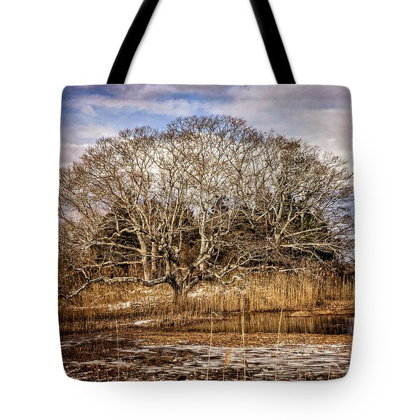 Tree In Marsh Tote Bag