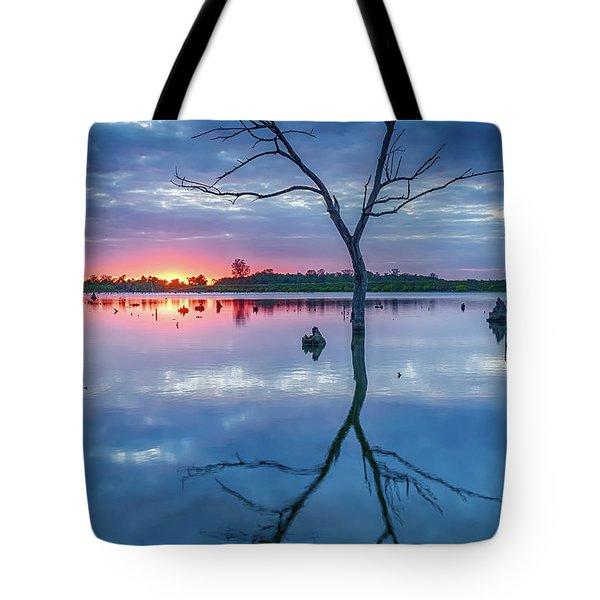 Tree In Silhouette Tote Bag by Jae Mishra
