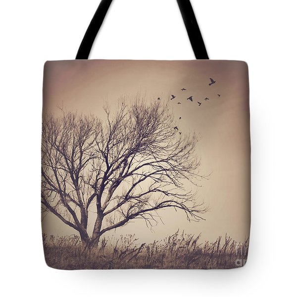 Tote Bag featuring the photograph Tree by Juli Scalzi