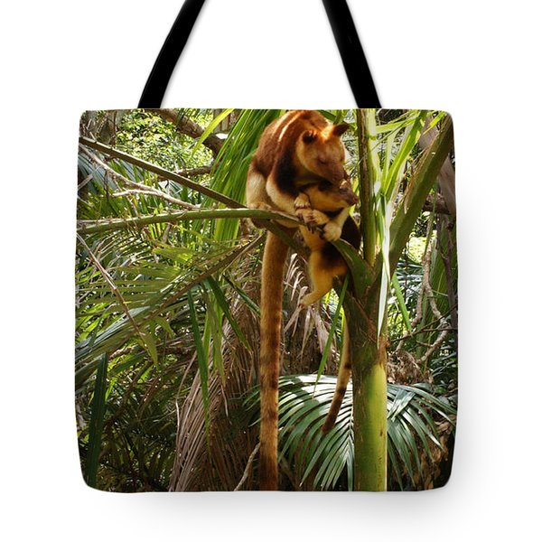 Tree Kangaroo 2 Tote Bag