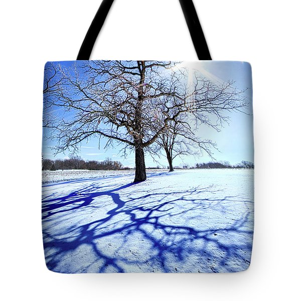 Tote Bag featuring the photograph Tree Light by Phil Koch