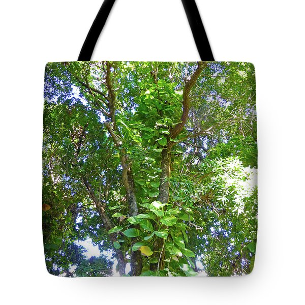 Tote Bag featuring the photograph Tree M1 by Francesca Mackenney