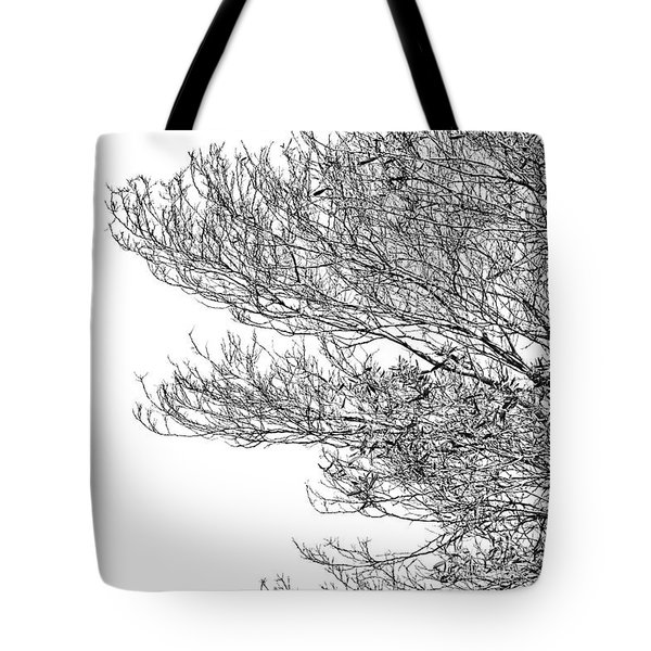 Tree No. 7-2 Tote Bag