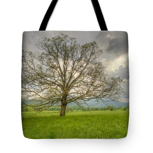 Tree Of Life Tote Bag by Doug McPherson