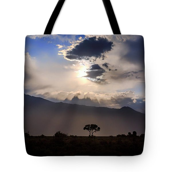 Tote Bag featuring the photograph Tree Of Light by Cat Connor