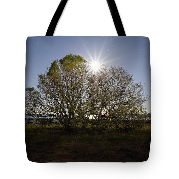 Tree Of The Night Tote Bag