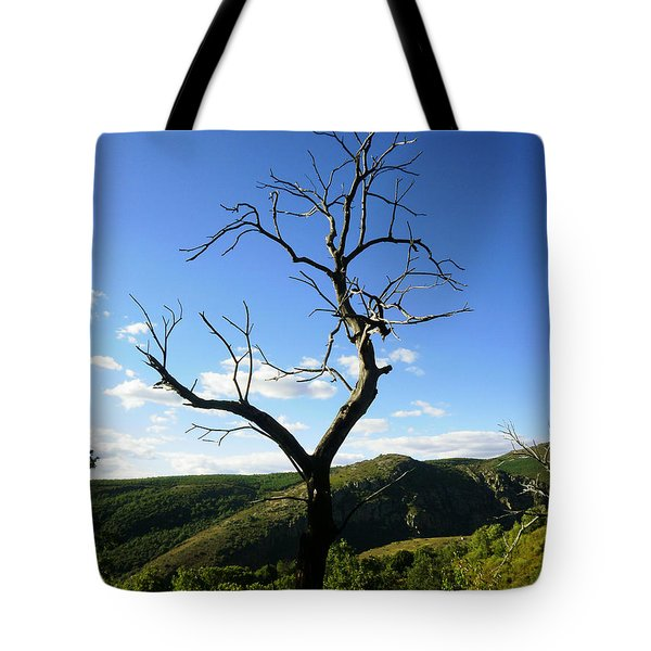 Tree Tote Bag by Oliver Johnston