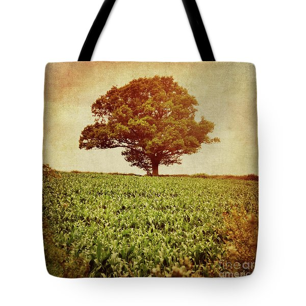 Tote Bag featuring the photograph Tree On Edge Of Field by Lyn Randle