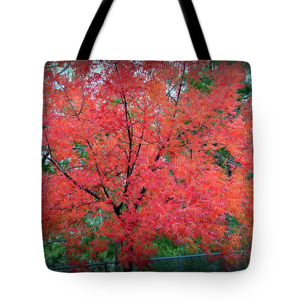 Tote Bag featuring the photograph Tree On Fire by AJ Schibig