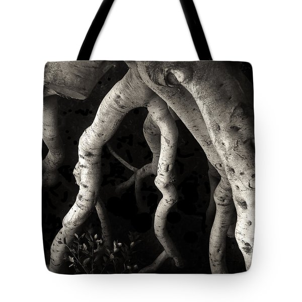 Tree On Mission Street Tote Bag by Gary Warnimont