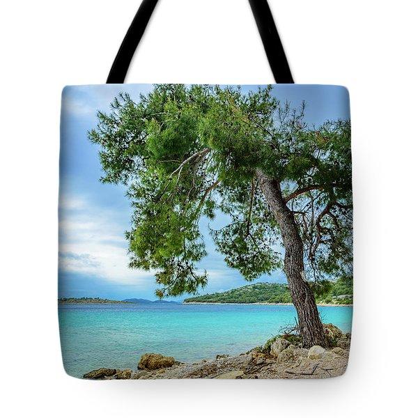 Tree On Northern Dalmatian Coast Beach, Croatia Tote Bag