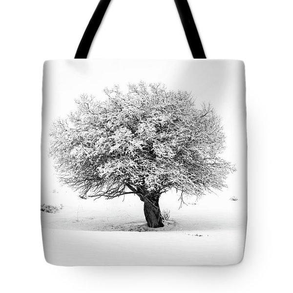 Tree On Snowy Slope Tote Bag