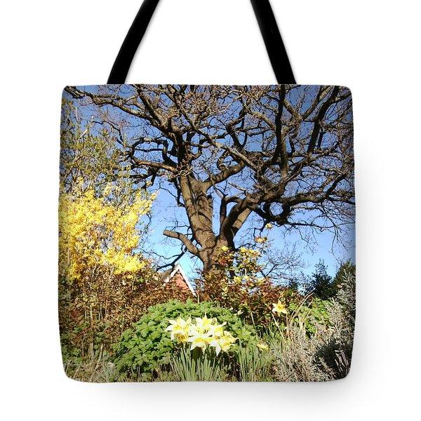 Tree Photo 991 Tote Bag