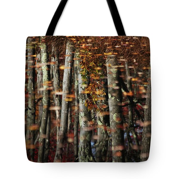 Tree  Reflect Tote Bag by Karol Livote