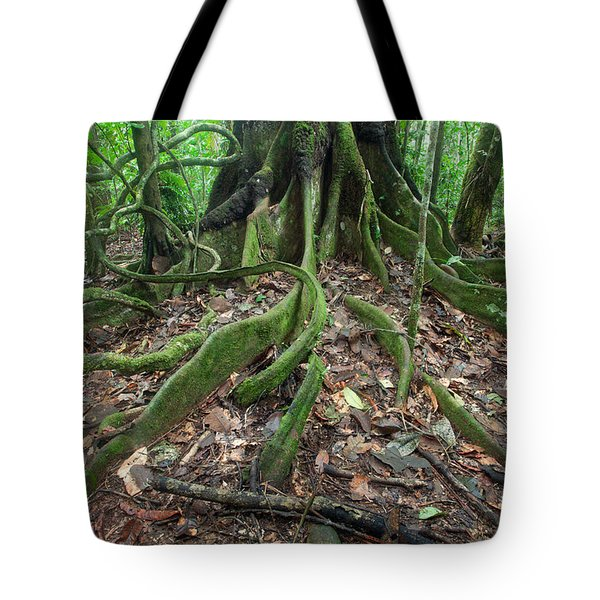 Tree Roots In Chalalan Rainforest Tote Bag